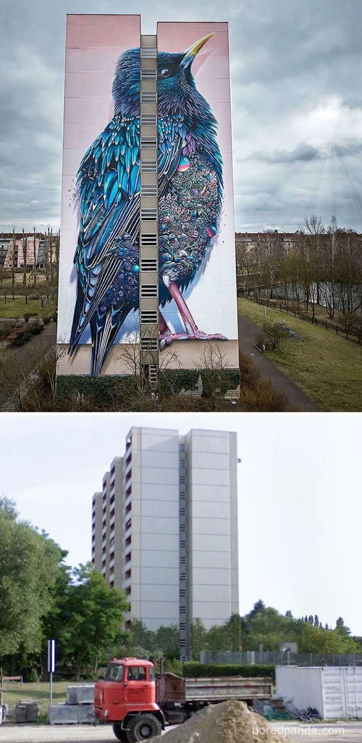 before-after-street-art-boring-wall-transformation-2-580df352b1353__700-2