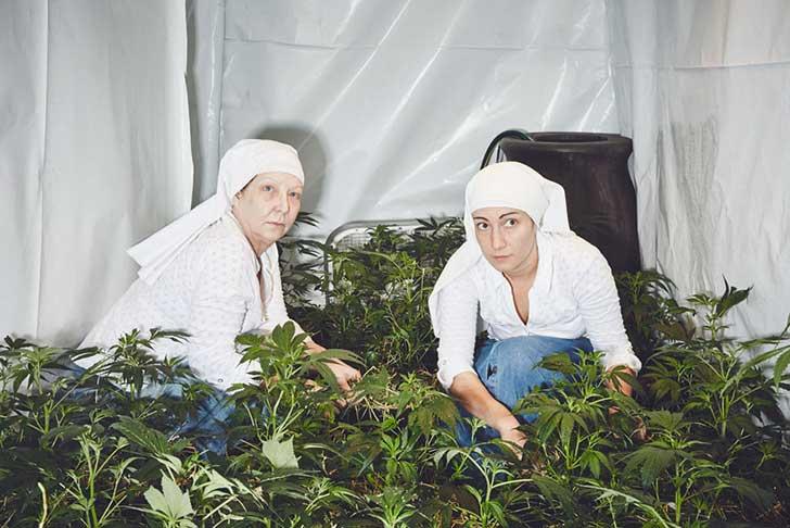 nuns-grow-marjuana-sisters-of-the-valley-shaughn-crawford-john-dubois-1