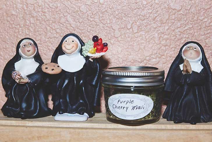 nuns-grow-marjuana-sisters-of-the-valley-shaughn-crawford-john-dubois-9