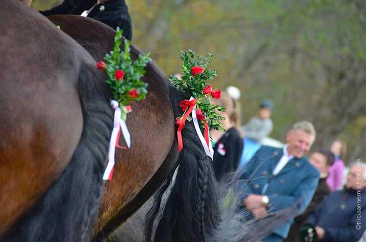 leonhardiritt-horse-blessing-in-unterammergau-horse-tails-decorated