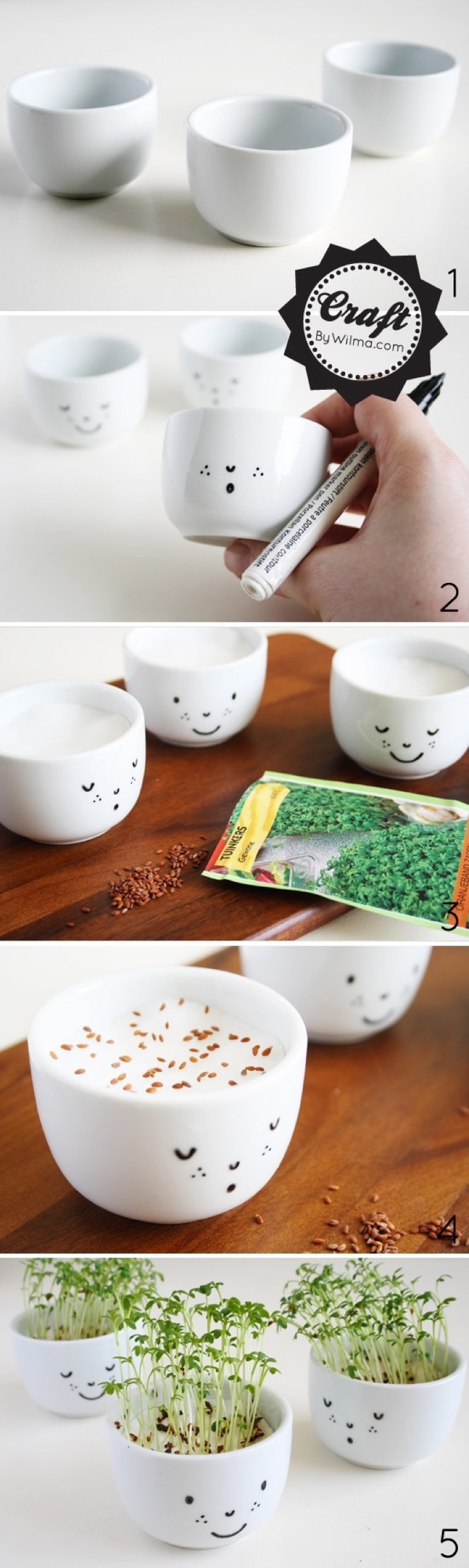 cute-cress-cups-with-a-face-diy