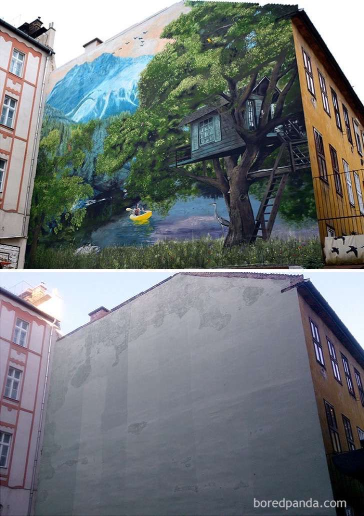before-after-street-art-boring-wall-transformation-4-580df7afbd8e2__700-2