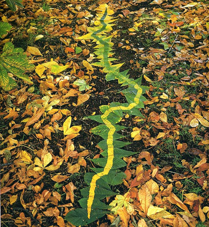 land-art-andy-goldsworthy-510