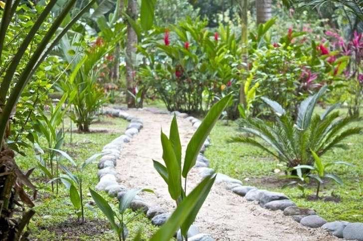 senderos-jardines-piedras-flores-patio 2