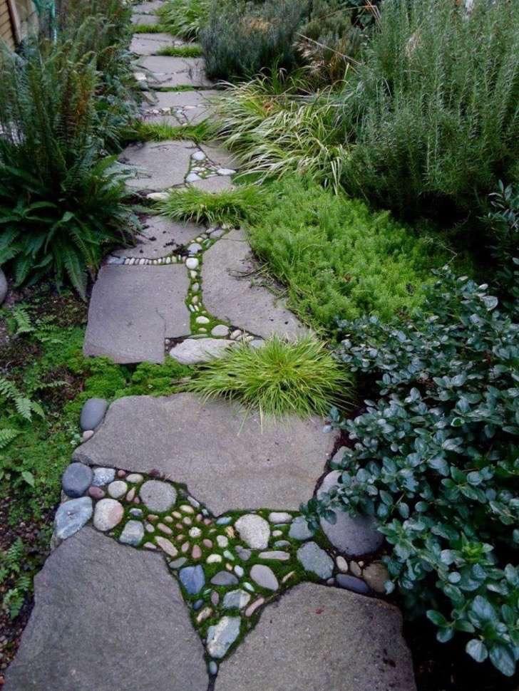 patio-sendero-ideas-helechos 2